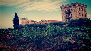 achaia clauss winecastle