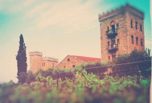 winecastle achaia clauss