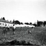 Η Φύτευση των αμπελώνων, 1861